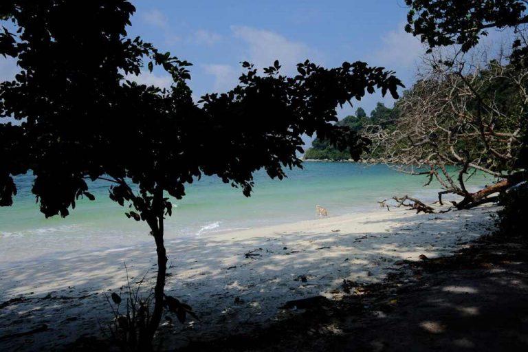 Teluk Segadas Beach